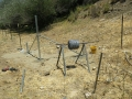 Cattle_Fencing__6-10_019