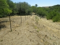 Cattle_Fencing__6-10_022