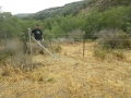 Cattle_Fencing__6-11_003