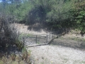 Cattle_Fencing__6-19_003