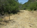 Cattle_Fencing__6-4_014