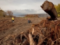 Volunteers collect trash near a large slash pile during a volunteer garbage cleanup at Riverfront Park in The Dalles, Oregon.